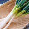 長ネギの栄養効果と食べ方【簡単な切り方と保存方法を紹介】