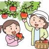 果樹ガーデニング初心者の基礎知識