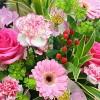 花言葉で愛を伝え贈る!花12選