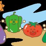 野菜の簡単プランター栽培【おすすめ野菜12種と時期や育て方ポイントを紹介】