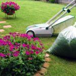 ガーデニングを楽しくするための管理と草花選び