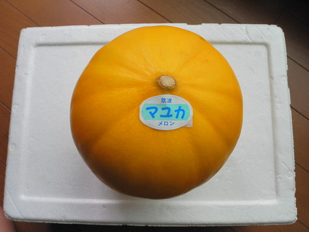 mayuka