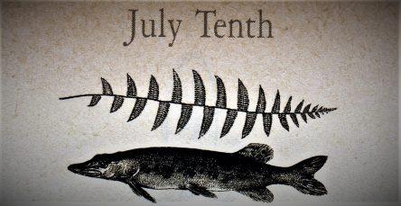 7月10日生まれの運勢と性格【星座/占星術とタロットで導く誕生日占い】