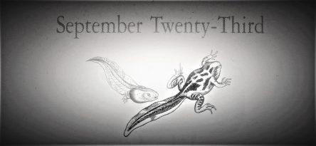 9月23日生まれの運勢と性格【星座/占星術とタロットで導く誕生日占い】
