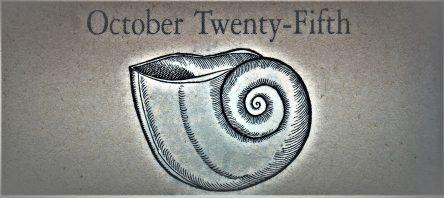10月25日生まれの運勢と性格【星座/占星術とタロットで導く誕生日占い】
