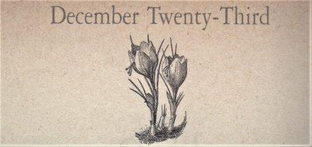 12月23日生まれの運勢と性格【星座/占星術とタロットで導く誕生日占い】