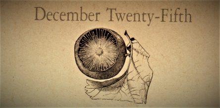 12月25日生まれの運勢と性格【星座/占星術とタロットで導く誕生日占い】