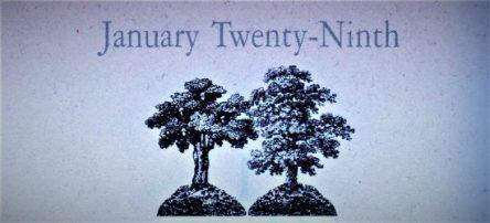 1月29日生まれの運勢と性格【星座/占星術とタロットで導く誕生日占い】