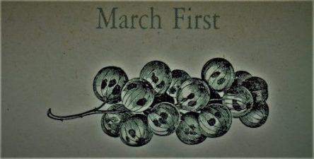 3月1日生まれの運勢と性格【星座/占星術とタロットで導く誕生日占い】