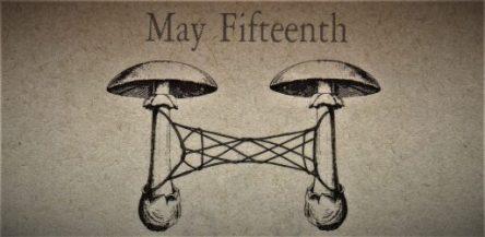 5月15日生まれの運勢と性格【星座/占星術とタロットで導く誕生日占い】