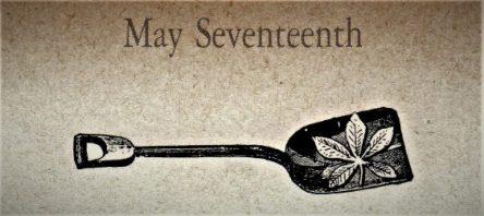 5月17日生まれの運勢と性格【星座/占星術とタロットで導く誕生日占い】