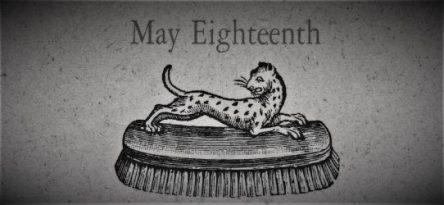 5月18日生まれの運勢と性格【星座/占星術とタロットで導く誕生日占い】