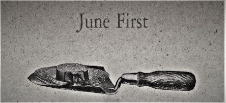 6月1日生まれの運勢と性格【星座/占星術とタロットで導く誕生日占い】