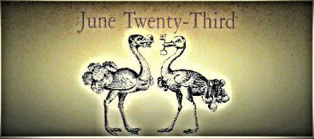 6月23日生まれの運勢と性格【星座/占星術とタロットで導く誕生日占い】